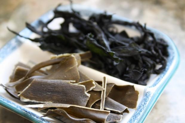 seaweed1-e1351197298911