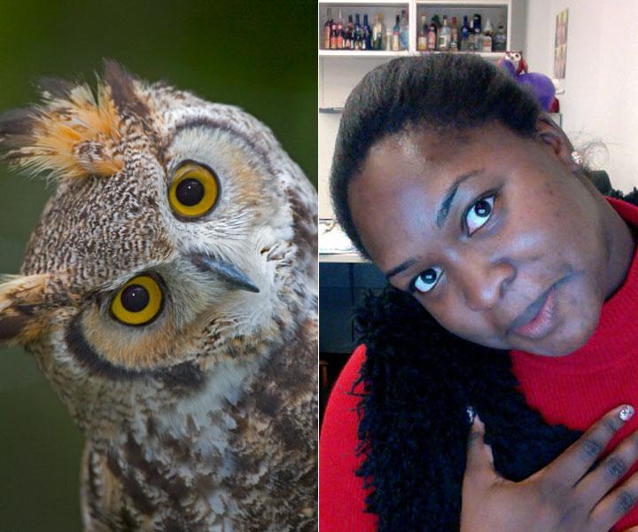 cos-07-owl-selfie-de
