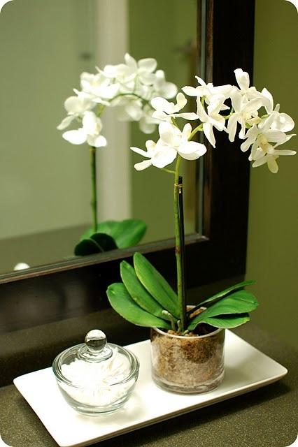 Orchideur alltaf fallegar og passa vel inn á baðharbergi